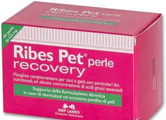 Accessori per la cura e la salute cani