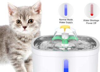 Ciotole e distributori per gatti