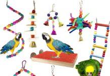 Gabbie per uccelli e accessori